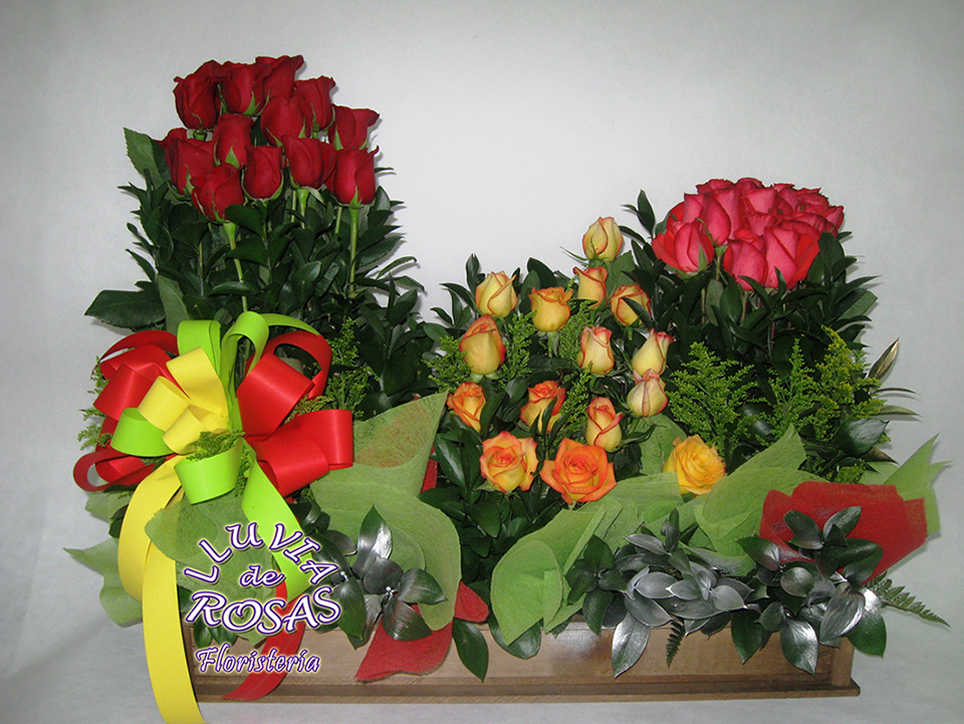 Garden 75 rosas