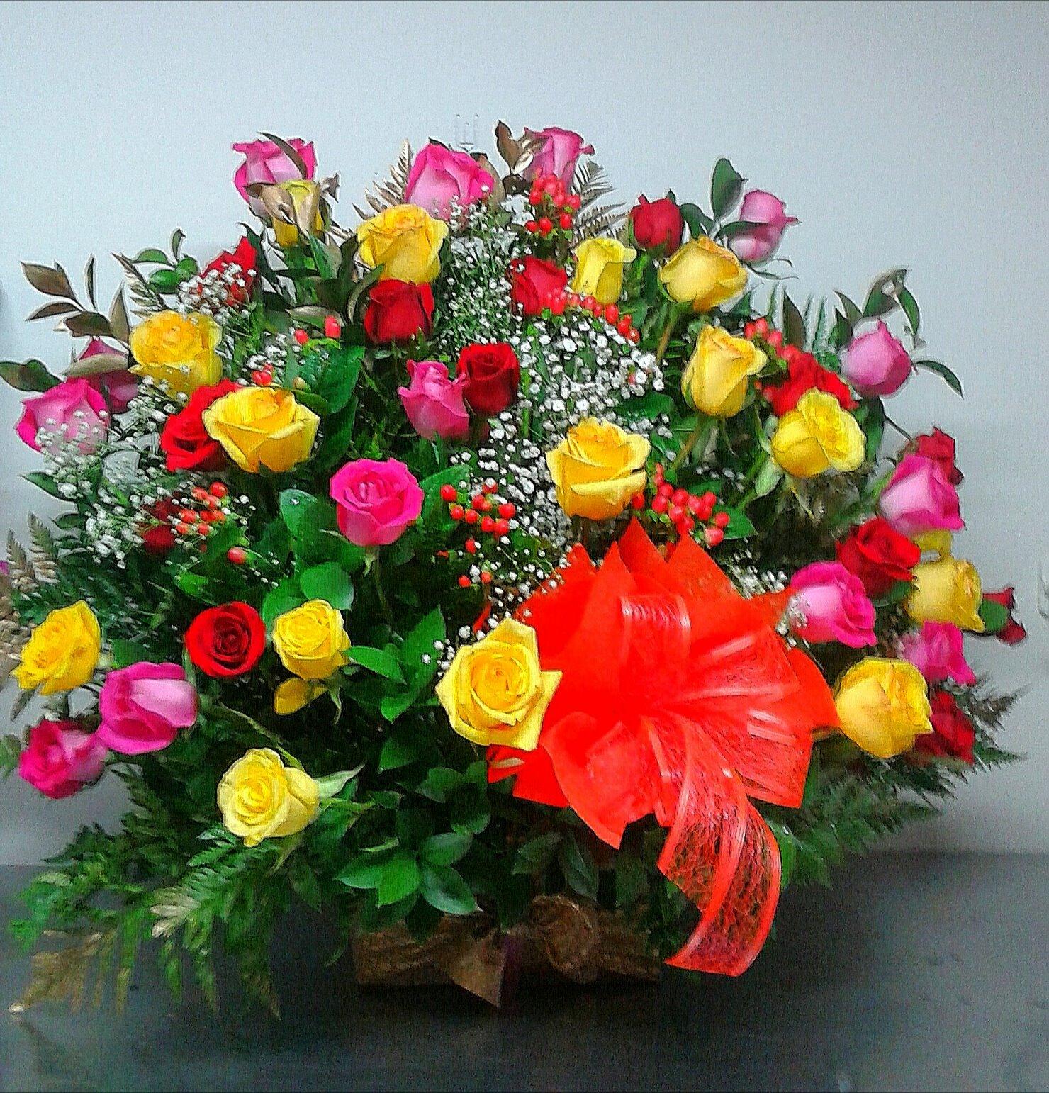 Colorido en Rosas