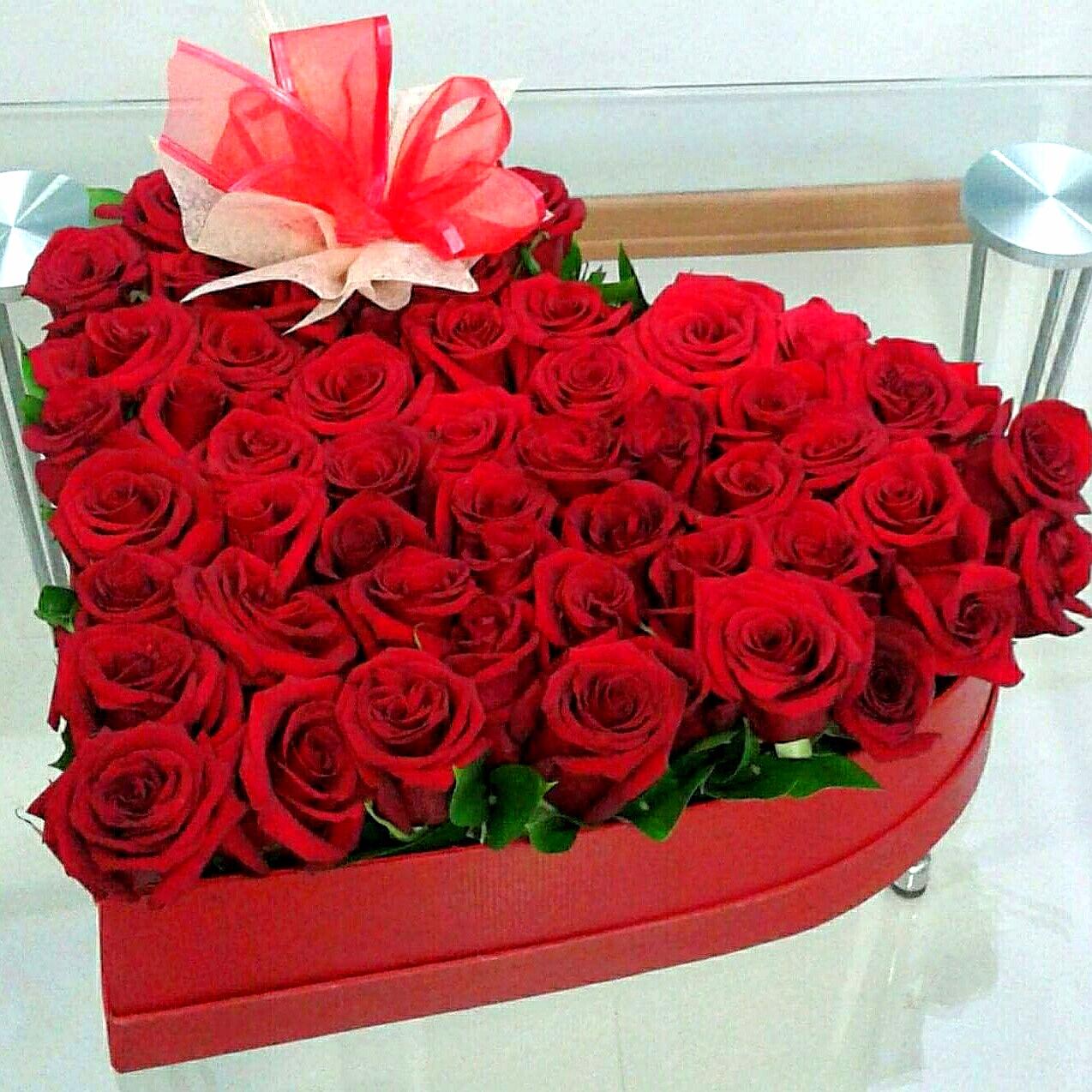 Corazón Rosso  50 Hermosas rosas rojas